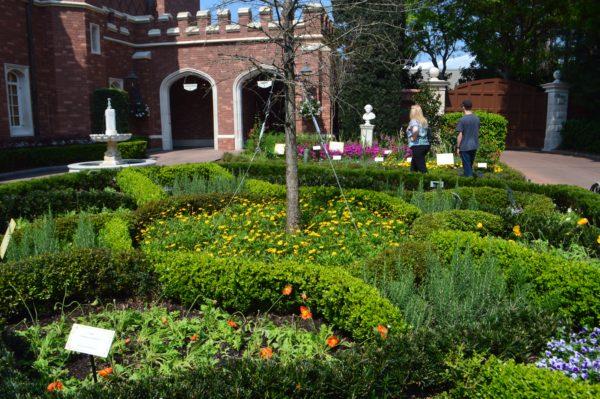 EPCOT Shakespeare Garden  Walt Disney World