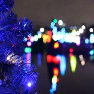 SeaWorld's Christmas Celebration Orlando | SparklyEverAfter.com