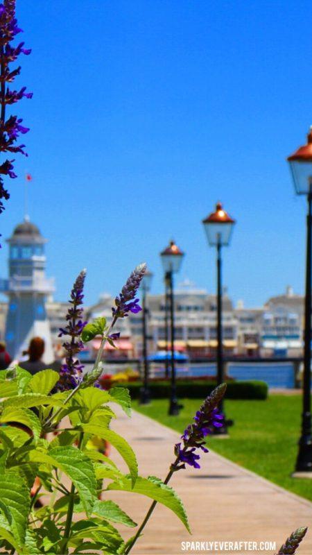 Disney's Yacht Club | SparklyEverAfter.com