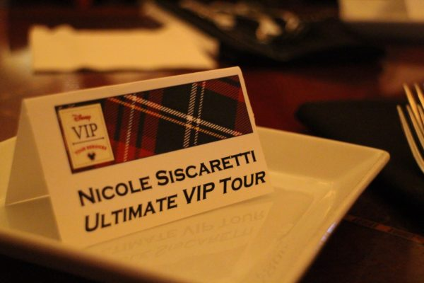 The Ultimate Day of Thrills VIP Tour Review