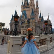 Cheap Cinderella Costume Review SparklyEverAfter.com