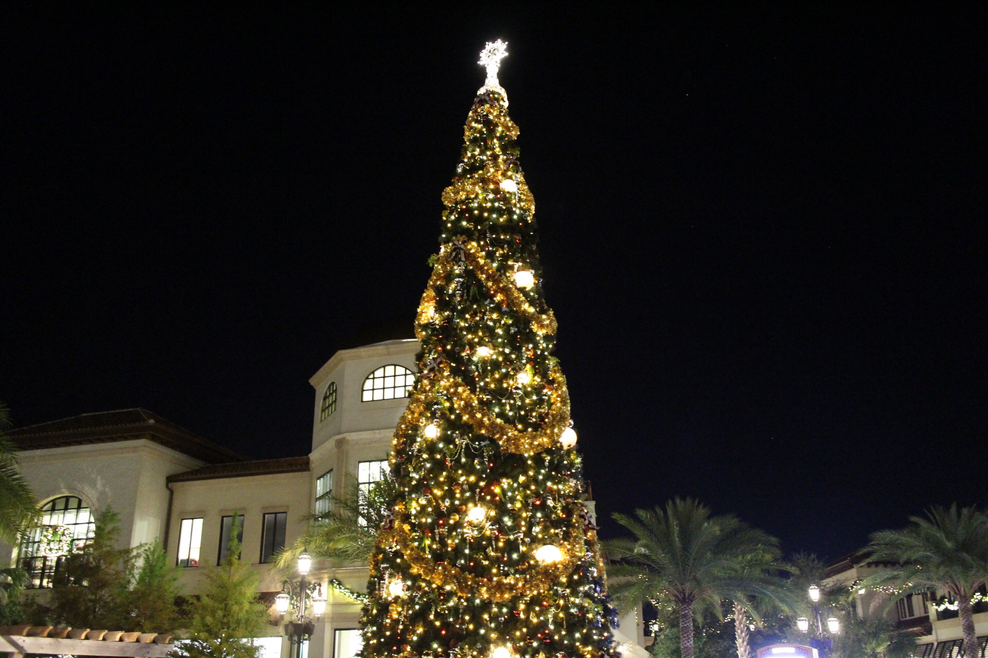 Disney Springs Christmas Tree